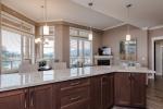 Penthouse Living Area Kitchen